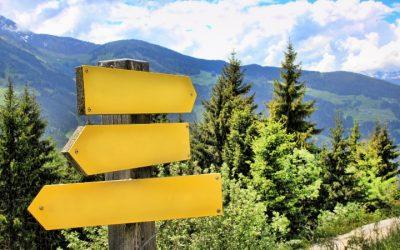 Volggedrag versus eigen richting: Ben jij een meeloper?
